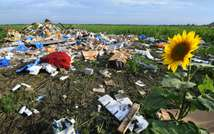 The wreckage of Malaysia Airlines flight MH17 that crashed near the village of Rassipnoe in rebel-held east Ukraine on July 17, 2014 (Dominique Faget (AFP/File))