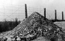 A pile of human bones and skulls at the Nazi concentration camp of Majdanek following its liberation by Russian troops in 1944 ( AFP/File )