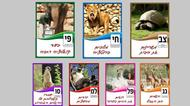 credits/photos : Jerusalem Biblical Zoo holds its own elections - for best animal