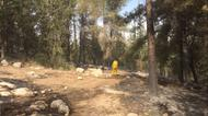 credits/photos : A firefighter surveys the forest near a wildfire burning close to Neve Shalom on November 22, 2016