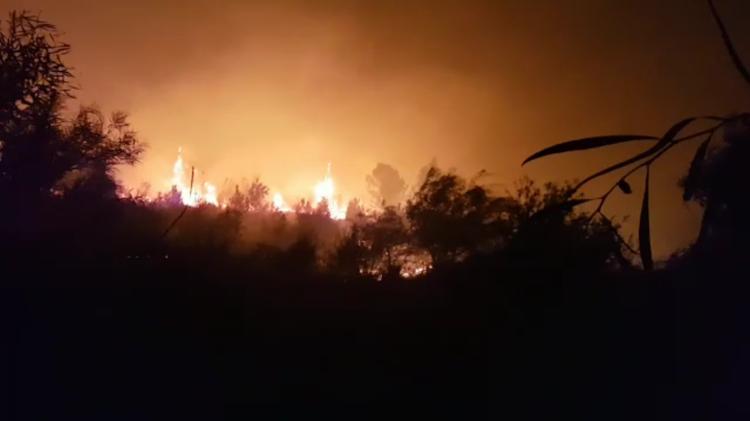 L'incendie de Haïfa est maîtrisé — Israël