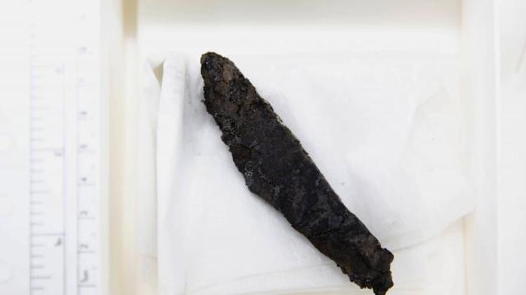 Le manuscrit, a été mis au jour en 1970 lors de travaux d'excavation à la synagogue d'Ein Gedi en Israël
