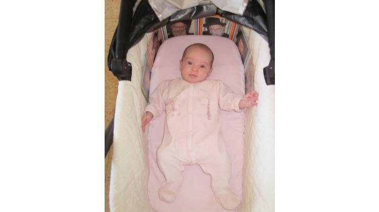 Three-month-old victim of Jerusalem terror attack on Oct. 22, 2014, Haya Zissel-Brown