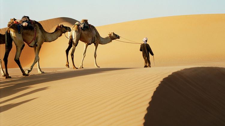 الإمارات تدير ظهرها للصحراء وتؤثر الأجرام بـ 5 مليارات دولار