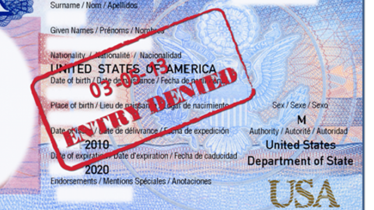 Visa for the US