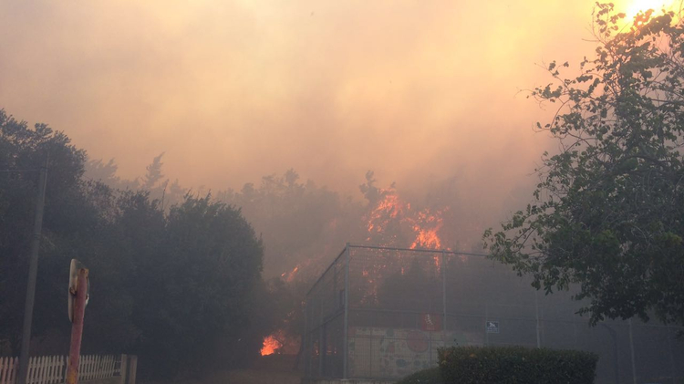 Fire in Zichron Ya'akov  on November 22, 2016