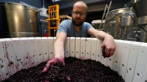 Winemakers return to forebears' stomping ground: Paris