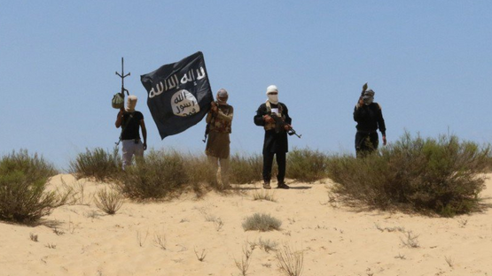 Islamic State claims Israeli drone strike killed five militants in Sinai: Amaq