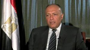 مصر تعدّ قرارا مشتركا لوقف إطلاق النار في سوريا