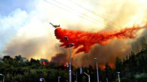 Israël: sur 80 incendies enquêtés, 71 étaient d'origine criminelle (rapport)