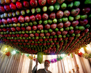 A Samaritan man stands under a Sukkah made of fruits inside his house during the holiday of Sukkot (the Tabernacles Feast) celebrations on Mount Gerizim near the northern West Bank city of Nablus ( AFP/ Jaafar Ashtiyeh )