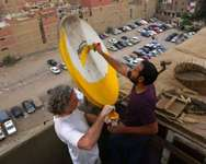 """Cairo Dish-Painting Initiative"" launched to beautify the city's skyline, Egypt ( Facebook )"