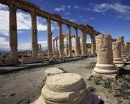 Vue en date du 14 mars 2014 de la ville antique de Palmyre en Syrie ( JOSEPH EID (AFP) )