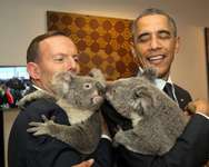 Australian Prime Minister Tony Abbott (L) and US President Barack Obama hold Koalas before the start of the first G20 meeting in Brisbane on November 15, 2014 ( Andrew Taylor (G20 AUSTRALIA/AFP) )