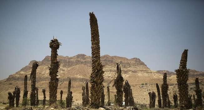 تراجع مياه البحر الميت يتسبب في تكون آبار جافة خطيرة ( رويترز )