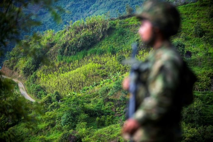 Weapons hand-over by Colombia's FARC rebels nearly complete