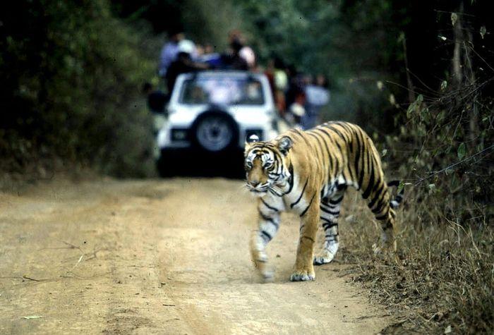 Aditya Singh (AFP/File)