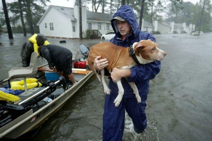CHIP SOMODEVILLA (GETTY IMAGES NORTH AMERICA/AFP)