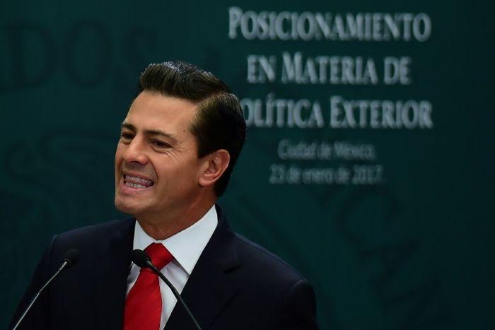 Ronaldo SCHEMIDT (AFP/File)