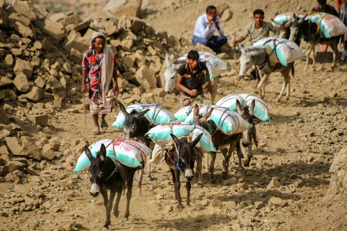 People transport supplies through the mountains along the only path accessible between the southern cities of Aden and Taez on December 26, 2015. AFP PHOTO / AHMAD AL-BASHA
