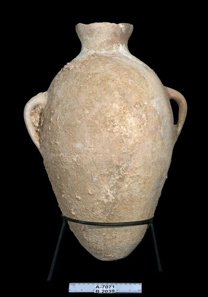Clara Amit, courtesy of the Israel Antiquities Authority