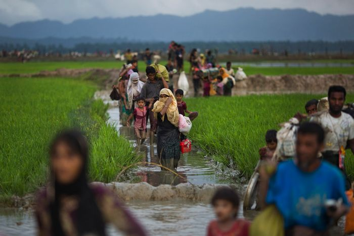 370000 Rohingya refugees flee to Bangladesh