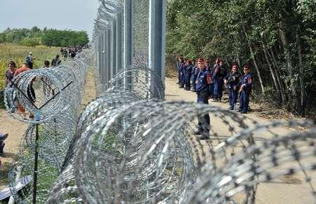 Migrants et réfugiés le 15 septembre 2015 d'un côté de la clôture barbelée  près de Horgos en Serbie,   gardée de l'autre côté par la police hongroise  ( ELVIS BARUKCIC (AFP) )