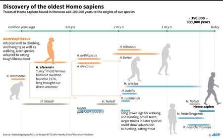 Discovery of the oldest homo sapiens ( John SAEKI, Adrian LEUNG (AFP) )