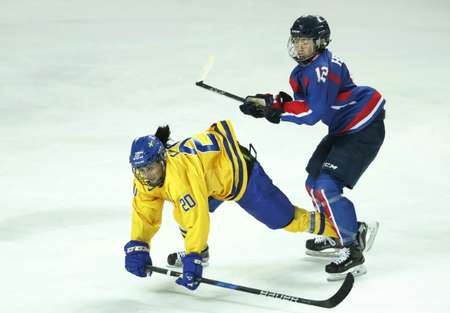 The two Koreas have already formed a joint ice hokey team for the Winter Olympics ( KIM HONG-JI (POOL/AFP) )