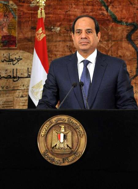 President of Egypt 2014 2014 Shows President Abdel