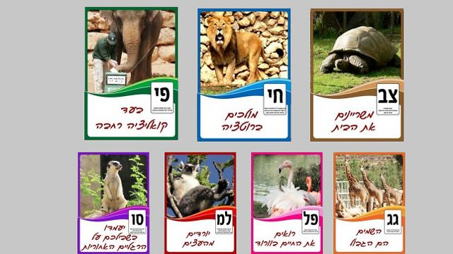 Jerusalem Biblical Zoo holds its own elections - for best animal
