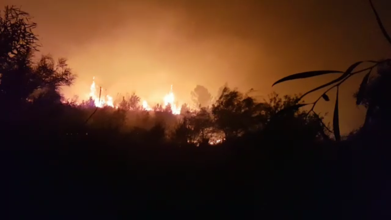 A forest fire rages near Neve Shalom on November 11, 2016