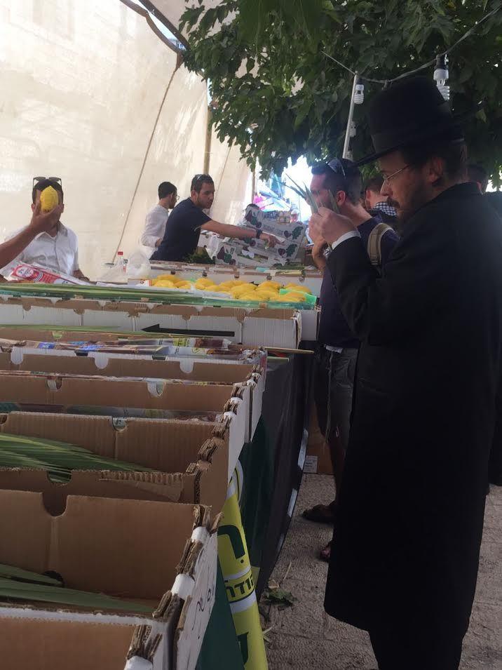 Souccot est la fête des Cabanes, l'une des fêtes les plus joyeuses de la tradition juive