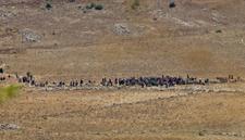 Plus d'une centaine de Syriens déplacés s'approchent de la frontière avec Israël