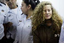 Palestinian 'slap video' Teen jailed eight months in plea deal