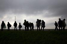 Des migrants et des réfugiés près du village de Simanovci sur une route reliant Belgrade à la frontière croate, le 12 novembre 2016
