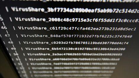 """La Russie a été visée par """"25 millions de cyber-attaques"""" lors du Mondial 2018"""