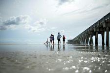 """الإعصار """"مايكل"""" يصل اليابسة في فلوريدا بقوة 250 كيلومترا في الساعة"""