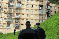 France says foiled suspected terror attack, two brothers nabbed