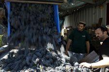 Un grand magasin au Japon interdit des vins en provenance du Golan