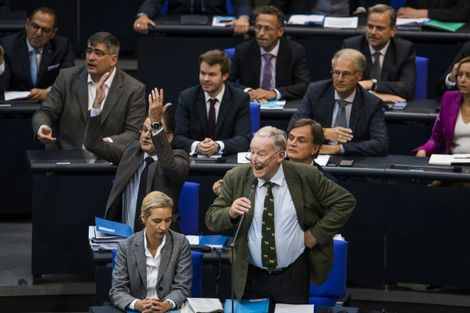 The far-right Alternative for Germany (AfD) has brought its more confrontational style into the normally staid chamber of the Bundestag