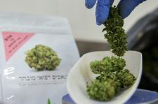 Analysis: How cannabis legalization became 'high priority' in Israel's 2019 vote