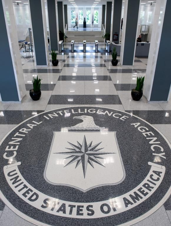 Wikileaks publishes more than 8,000 documents on CIA hacking tools