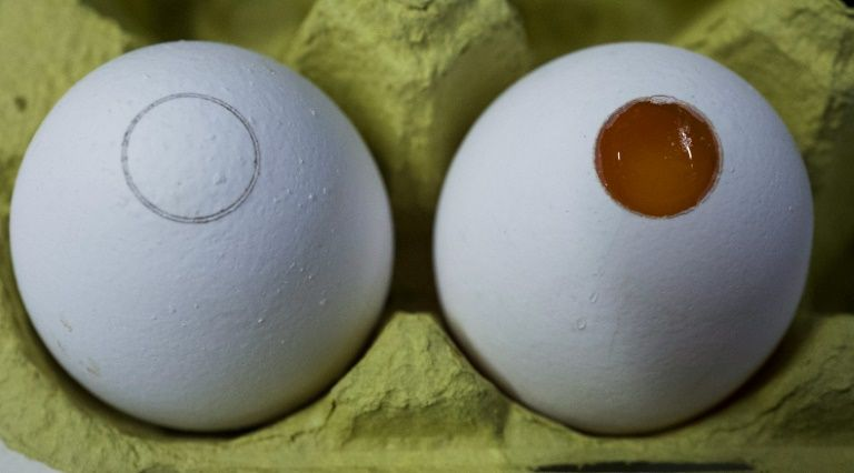 Contaminated eggs supplied to Irish food businesses, says FSAI