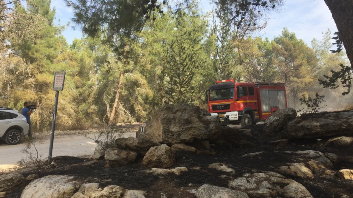 Firefighters work to get a forest fire near the village of Neve Shalom under control on November 22, 2016