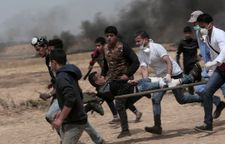EU calls for full investigation into killings of Palestinians