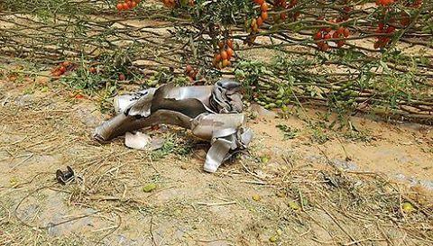 L'EI revendique le tir d'une roquette du Sinaï vers Israël